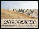 Chiropractic Sayings